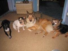 Aunty Sally & Family