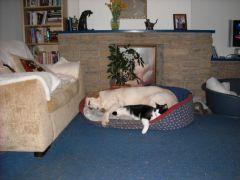 Winston and Jess  2009